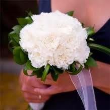 5. Carnation