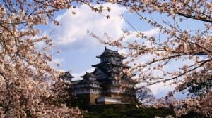 7.  Japan