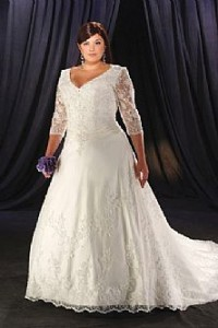 1. Lace Sleeves