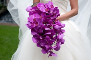 10. Cascading Purple Orchids