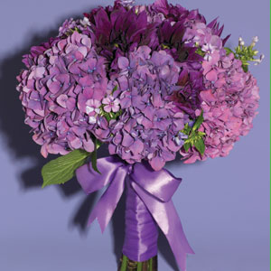 5. Hydrangeas in Purple