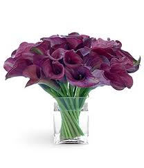 6. Purple Calla Lily
