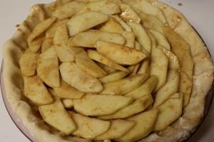 8. Apple Pie and Cobbler