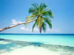 Top 10 Caribbean Honeymoon Destinations For Newlyweds Looking For a Sandy Getaway